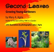 SECOND LEAVES COVER ARTFINALweb